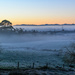 Frost and Mist! by yorkshirekiwi