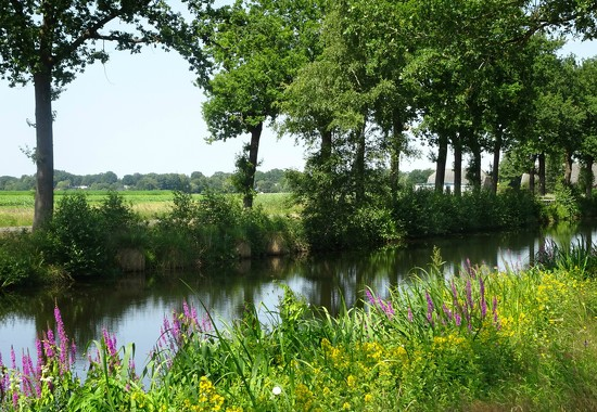 along the canal by gijsje