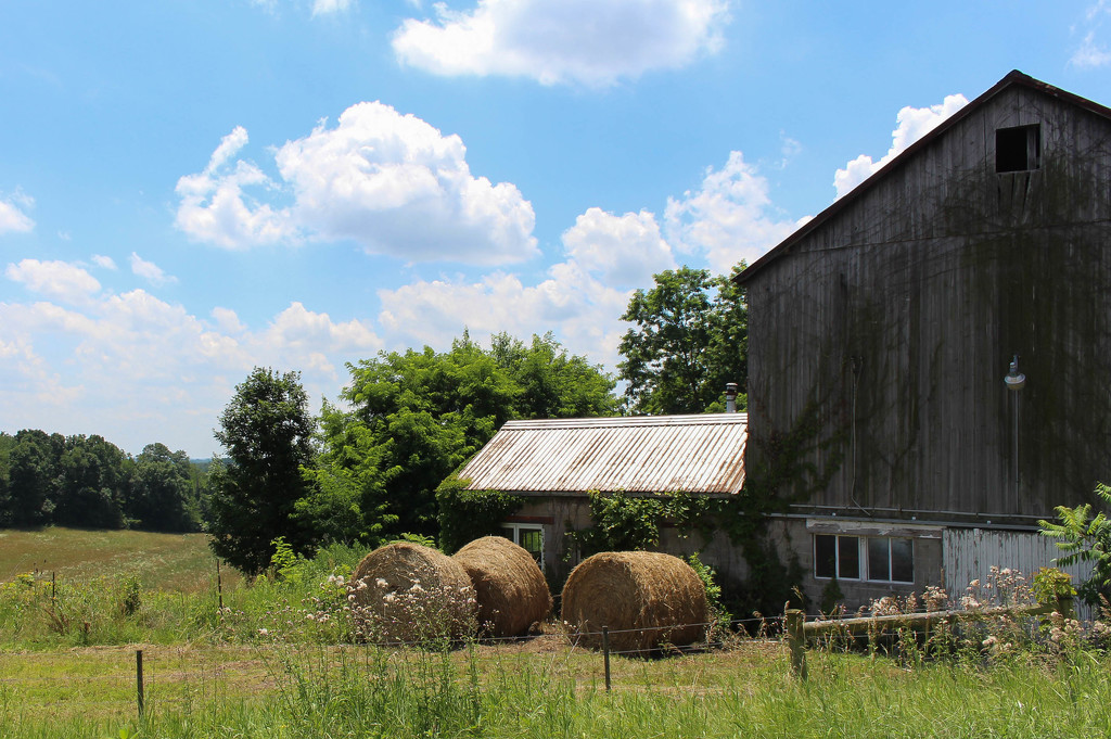 Bales of hay and a barn by mittens