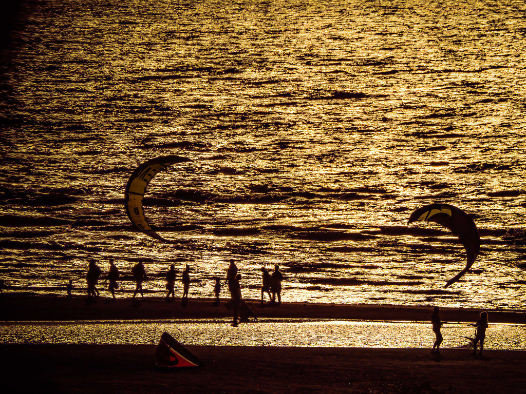 Sunny evening on the beach by haskar