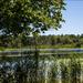 Pancoast Mill Pond