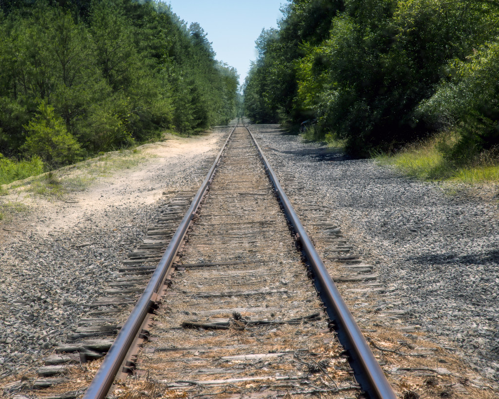 Along the Tracks by hjbenson