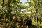 7th Jul 2018 - Wesley Hill Nature Preserve