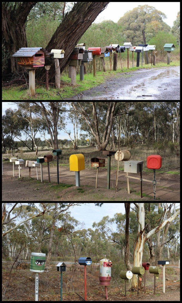 Bendigo trip - collage 2 by gilbertwood