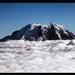 Mt Rainier - Above the Clouds