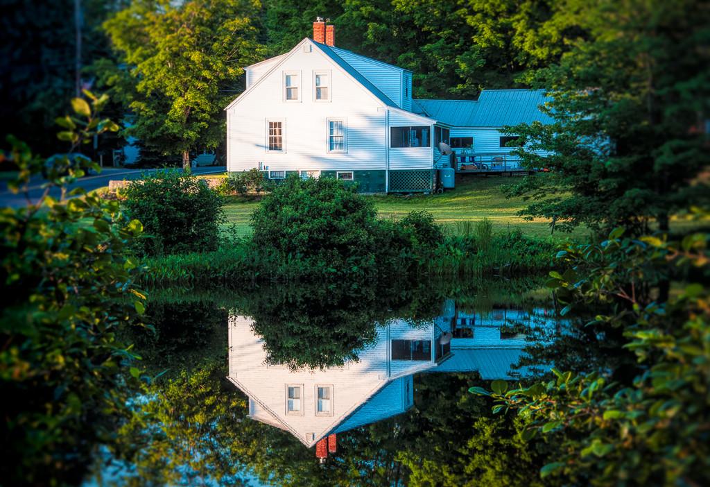Summer reflection by joansmor