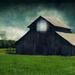 Country Barn  by joysfocus