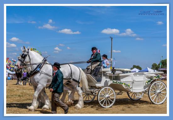 Wedding Carriage And Pair by carolmw