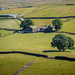 Warley Moor by ellida
