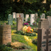 Evening Walk in Obermenzing Friedhof