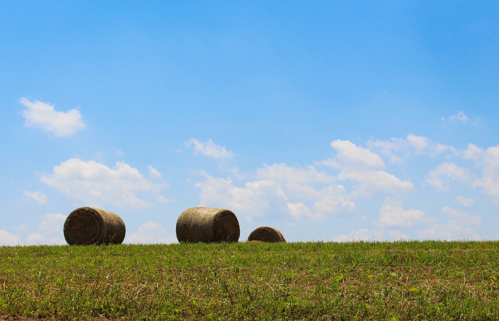 Some hay bales by mittens