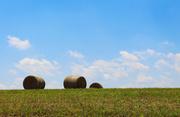 13th Jul 2018 - Some hay bales