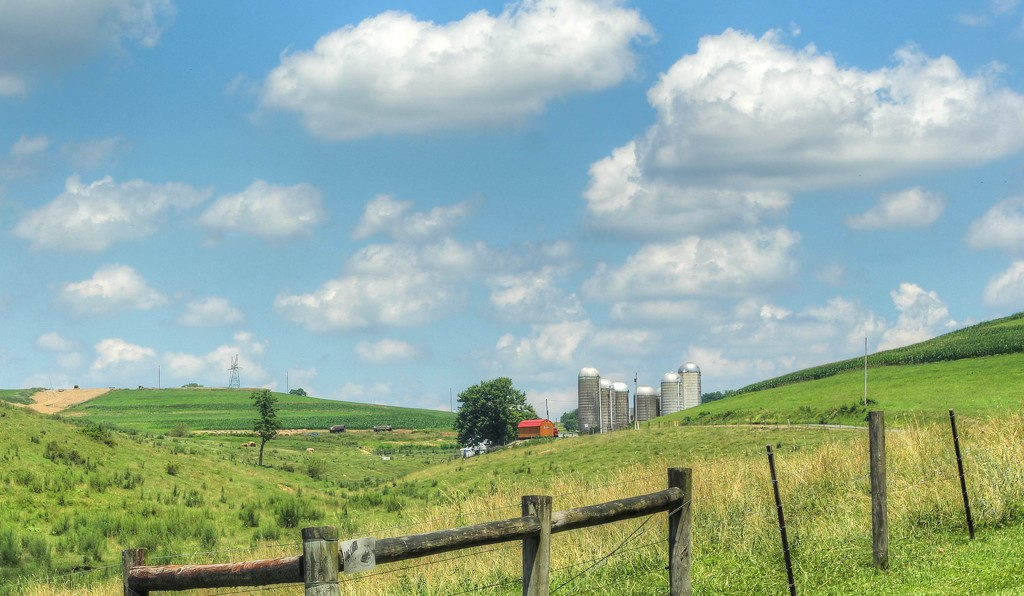 A farm in Pennsylvania by mittens
