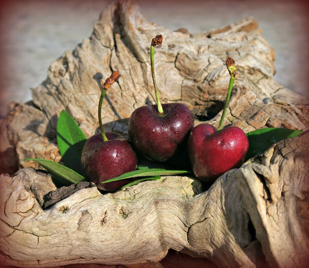 Cherry Ripe. by wendyfrost
