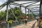 15th Jul 2018 - Flower Bridge.