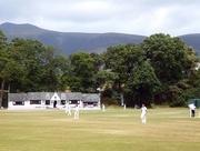 14th Jul 2018 - Cricket in the Park