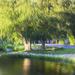 Buhl Farm Park