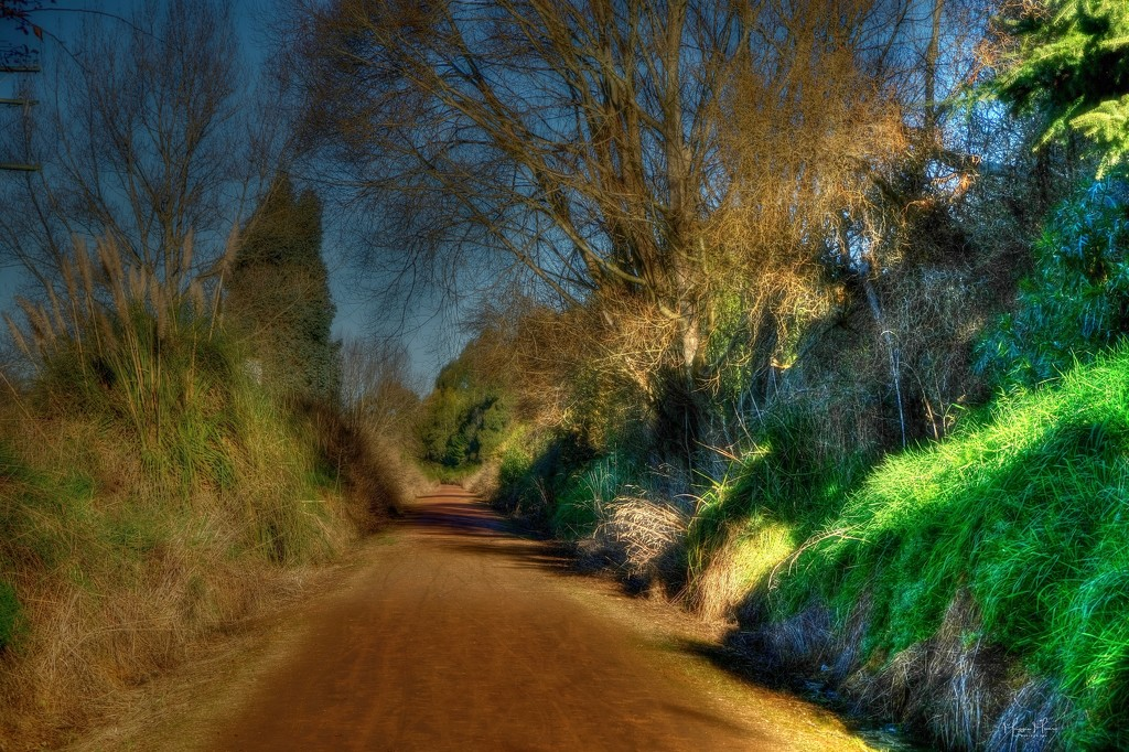 Cycle path by maggiemae
