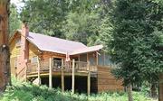 15th Jul 2018 - The Darrough Cabin