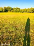 18th Jul 2018 - Long shadow.