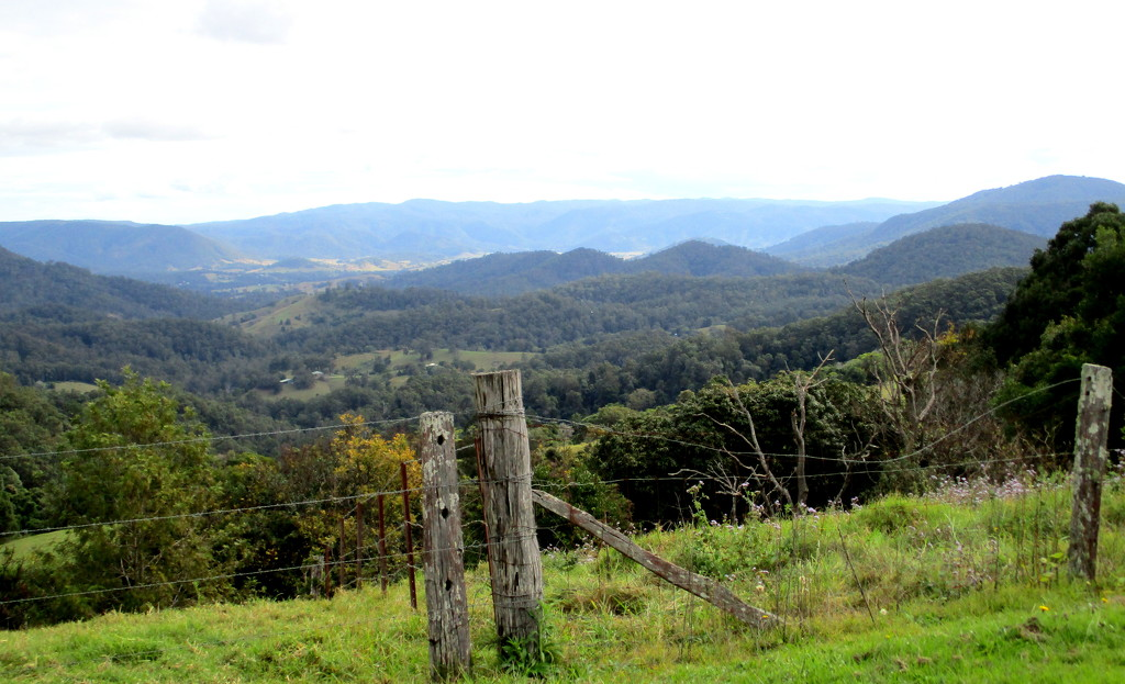 up on the Range   S.E Queensland by 777margo