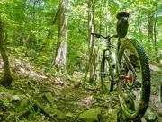 19th Jul 2018 - Biking...