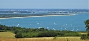 7th Jul 2018 - Studland Bay and Poole Harbour