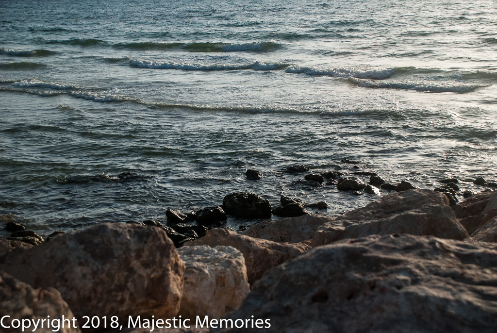 Mediterranian Shore  by mgbio