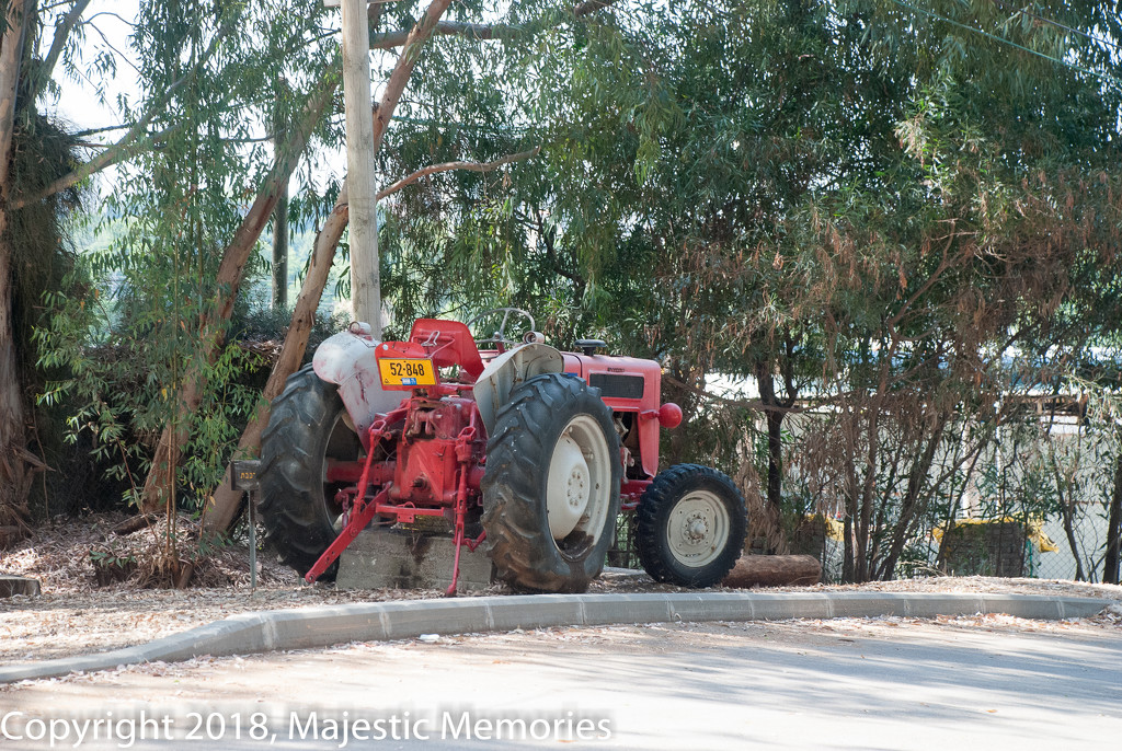 Ayalon Tractor  by mgbio