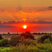 Snettisham Sunset with a 150mm lens