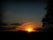22nd Jul 2018 - Sunset in the Forest of Dean