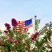 The flag flies and the Crepe Myrtles bloom, even when it's 110 degrees Fahrenheit