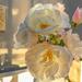 Roses in the Atrium.