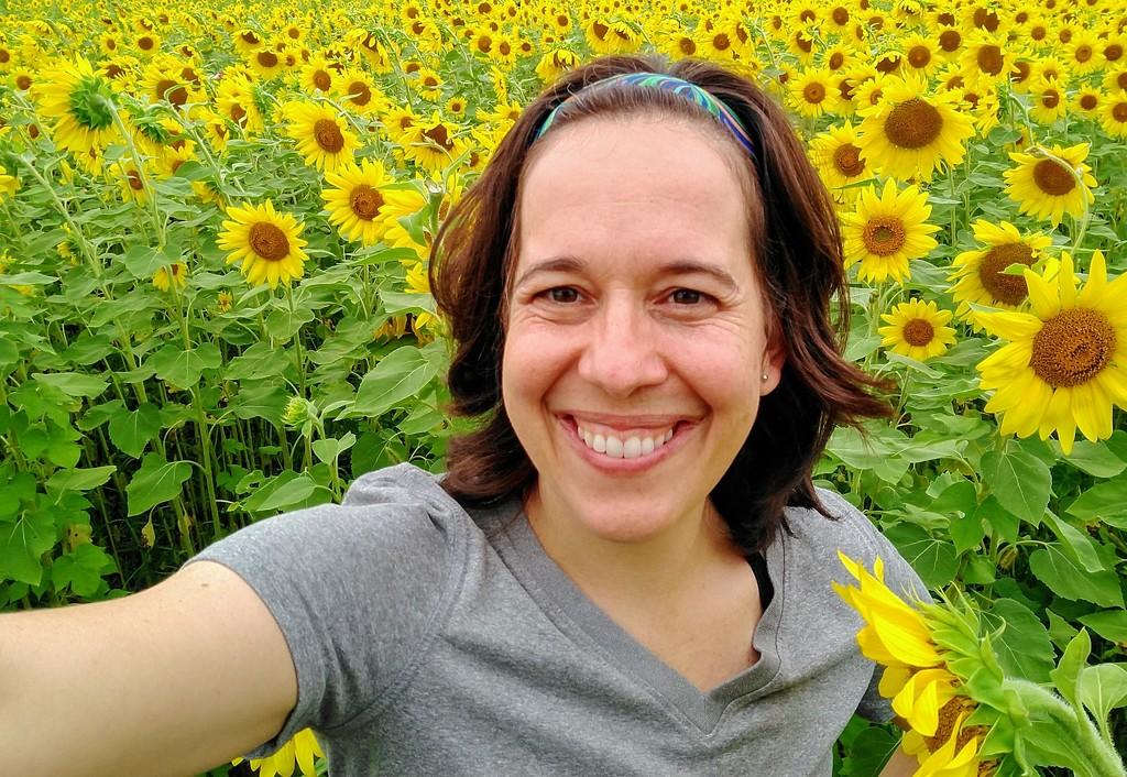 Funflower Field by alophoto