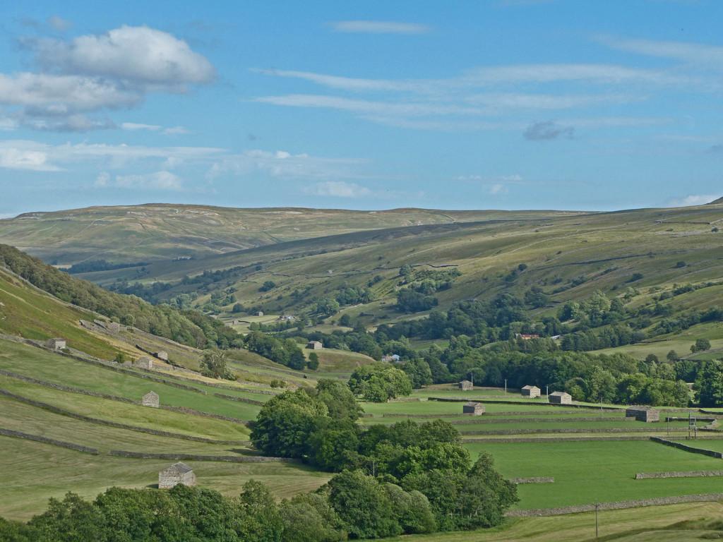 The Swaledale Valley by shirleybankfarm