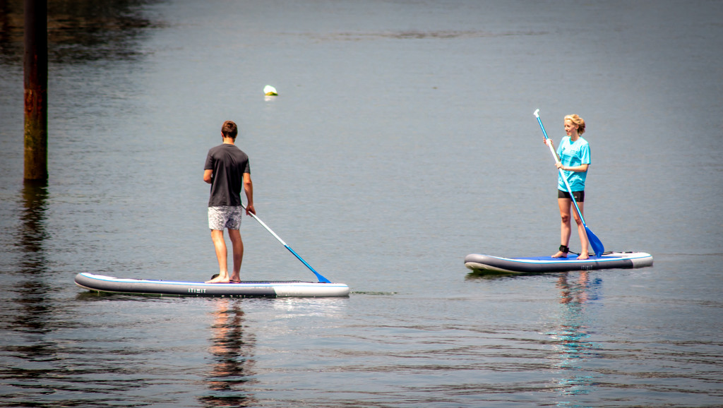 Fifty shades of paddle boarding by swillinbillyflynn