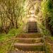 One Step Too Far by yorkshirekiwi