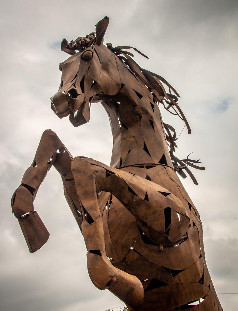 Iron Horse by swillinbillyflynn
