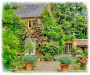 26th Jul 2018 - Coton Manor,Northamptonshire