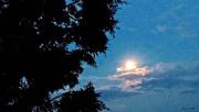 26th Jul 2018 - Goodnight Moon