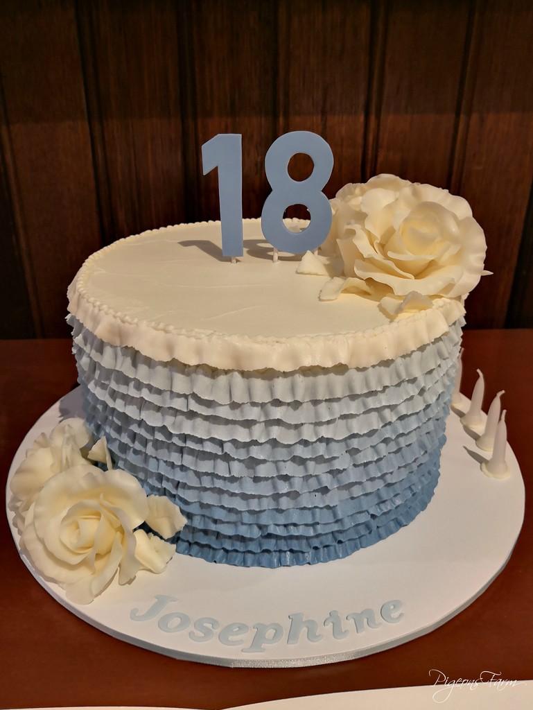 Happy 18th Josephine!  by kgolab