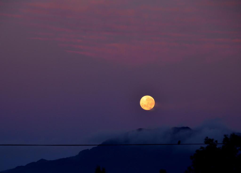 Moon at Sunrise  by salza