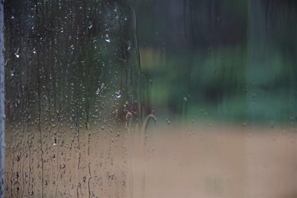 It's Raining On Sunday (NOT FAIR!!!) by 30pics4jackiesdiamond