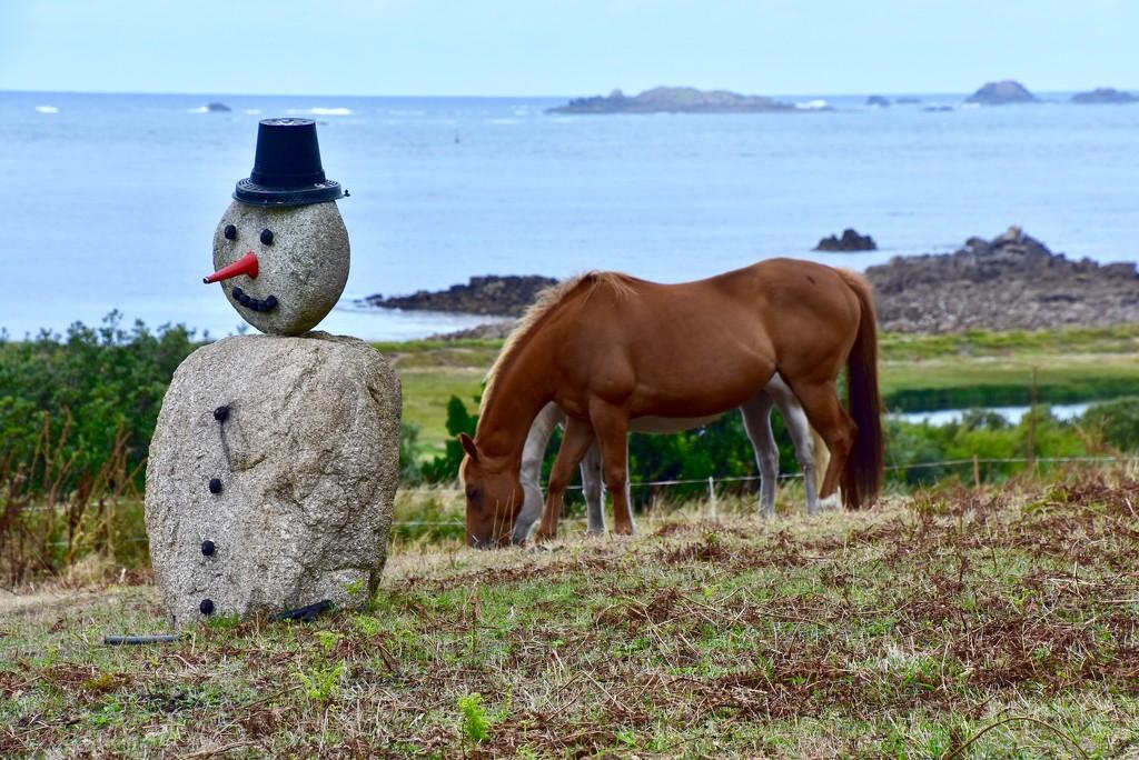 EXTRAS:  Summer Snowman by casablanca