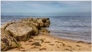31st Jul 2018 - Life's a beach!