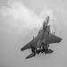 F-15 in B & W