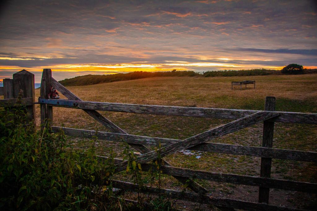 The gate by swillinbillyflynn