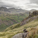 The Eskdale Needle by ellida