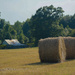 Hay ready for the barn...