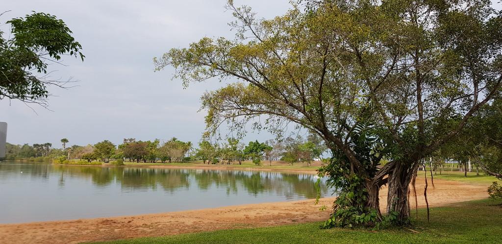 Morning at Lake Alexander by miraries